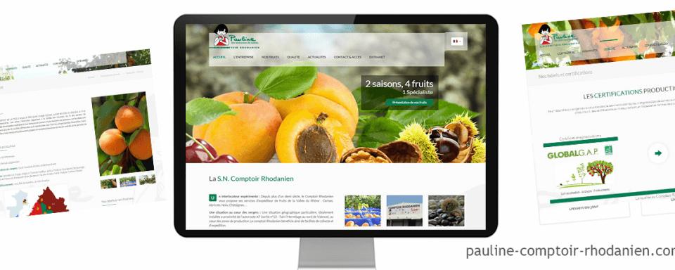 Réalisation du site internet vitrine multilingue de comptoir rhodanien
