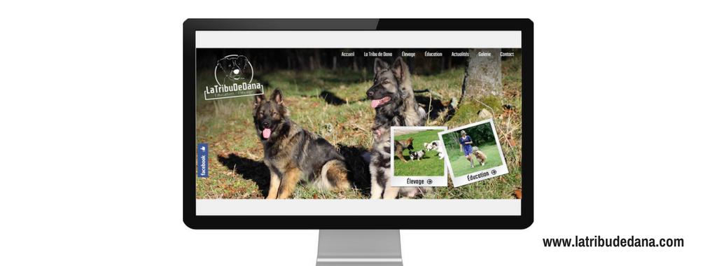 Site internet de La tribu de Dana, réalisé par l'agence web Boostacom